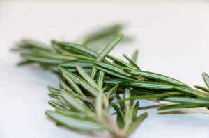 rosemary-for-cannellini-rosemary-soup